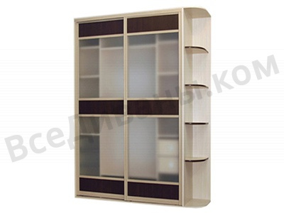 Двухдвердный шкаф-купе Лацио-1 вид спереди